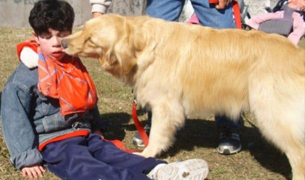 Sesión de caninoterapia