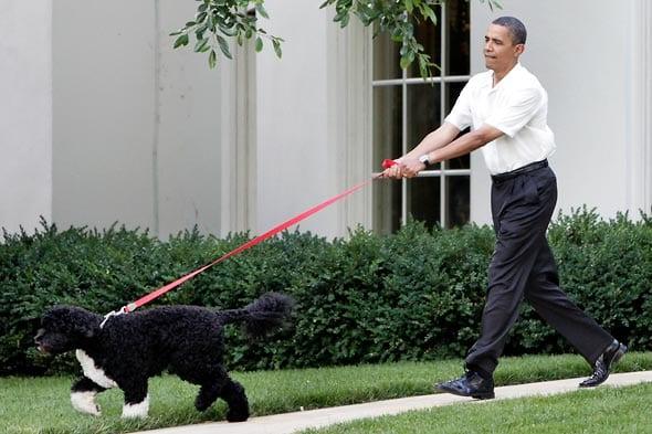 Presidentes de los EEUU con Bo