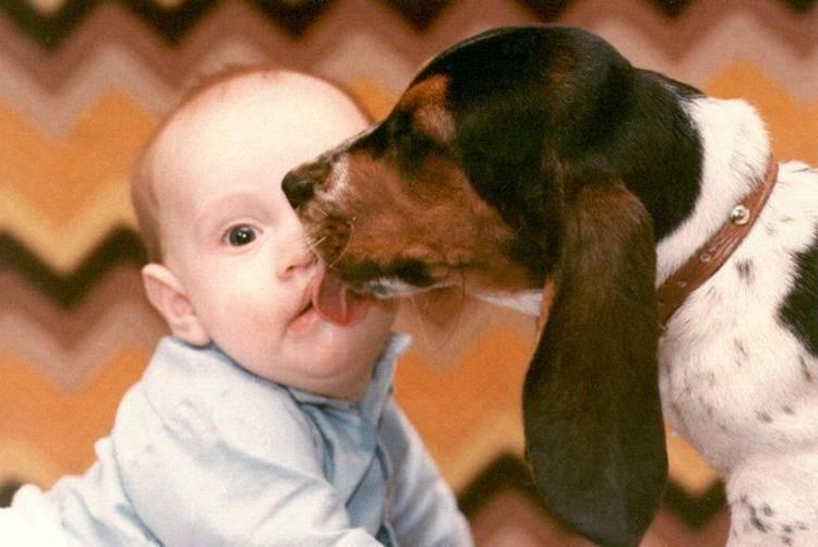 Perro lamiendo a un bebé
