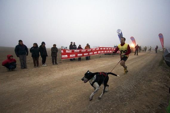 Deportes con perros