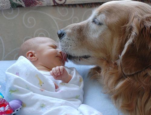 Nacimiento del bebé
