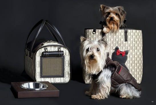 Colección Dog de Carolina Herrera