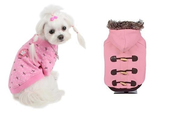 Ropa para perros hembra