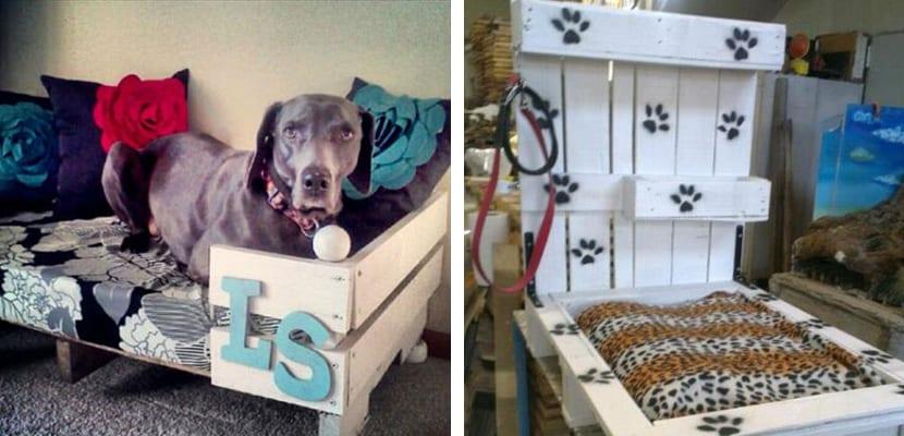 Camas de perros con palets