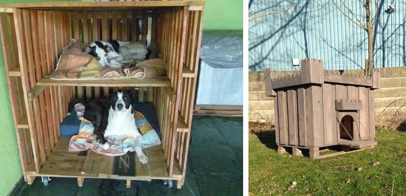 Casetas para perros con palets