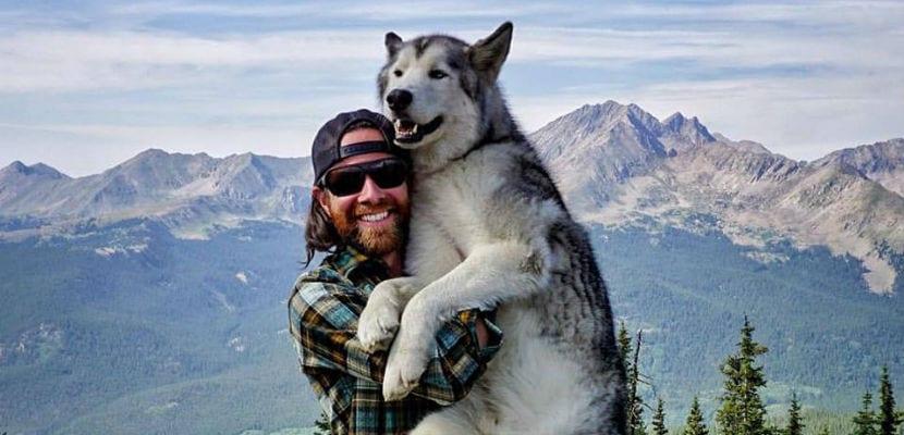 El perro lobo Loki junto a su dueño.
