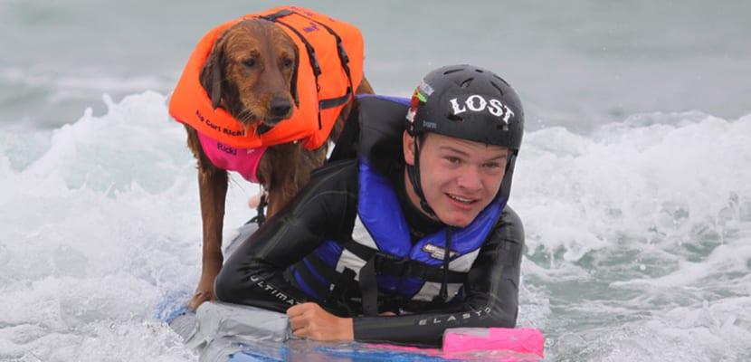Perro de terapia hace surf