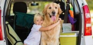 Viajar en coche con el perro en Semana Santa