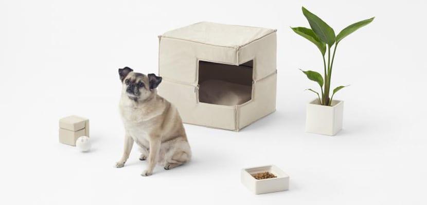Cama de diseño para perros estilo natural