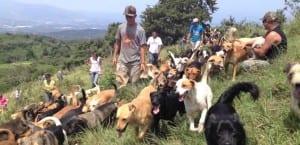 Refugio en Costa Rica en la montaña