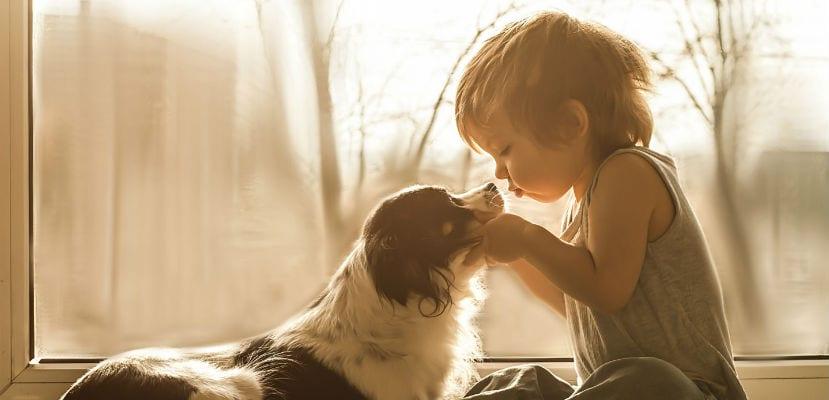 Niño con un perro.