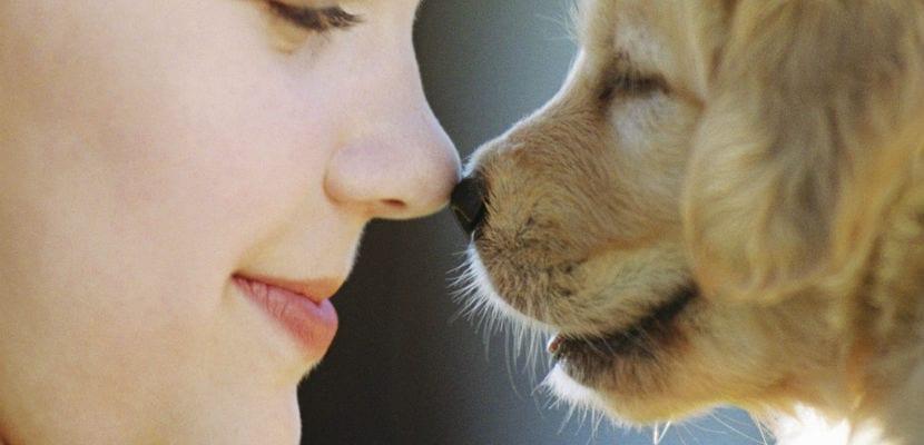 Mujer con cachorro de Golden Retriever.
