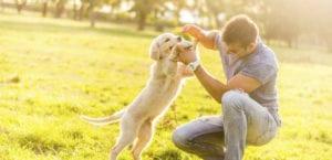 Hombre jugando con su perro.