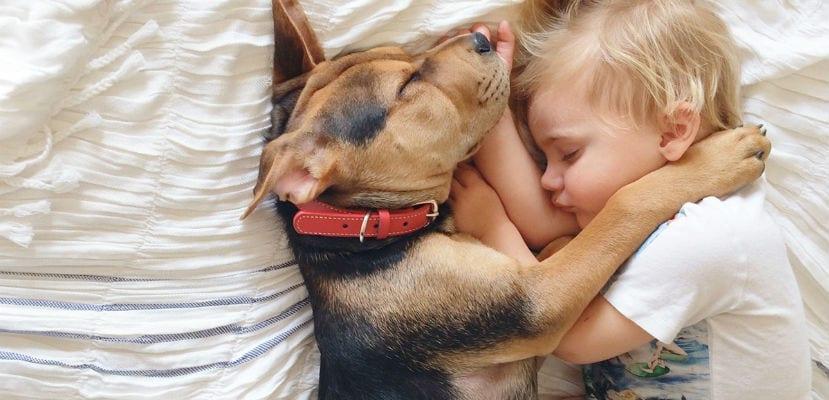 Niño durmiendo junto a su perro.