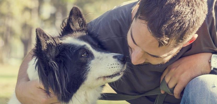 aprender-a-conectar-con-tu-perro