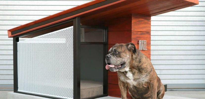 MDK9 Dog Haus, una moderna caseta para perros.