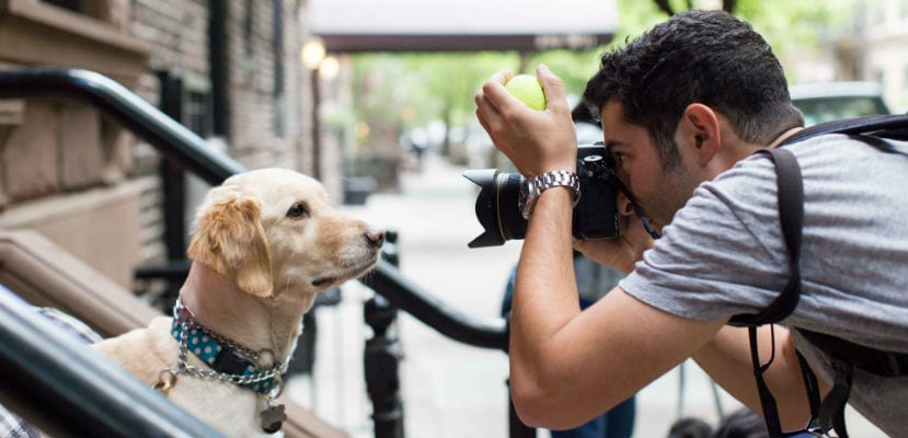 Elias Weis Friedman (The Dogist) fotografiando a un perro en la calle. l