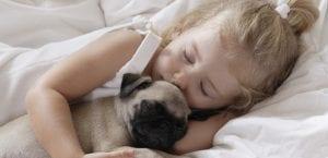 Dormir con el perro