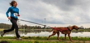 Mujer practicando Canicross con su perro.