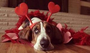 San Valentin y el chocolate