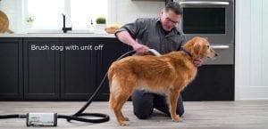 BarkBath, un dispositivo para bañar al perro.