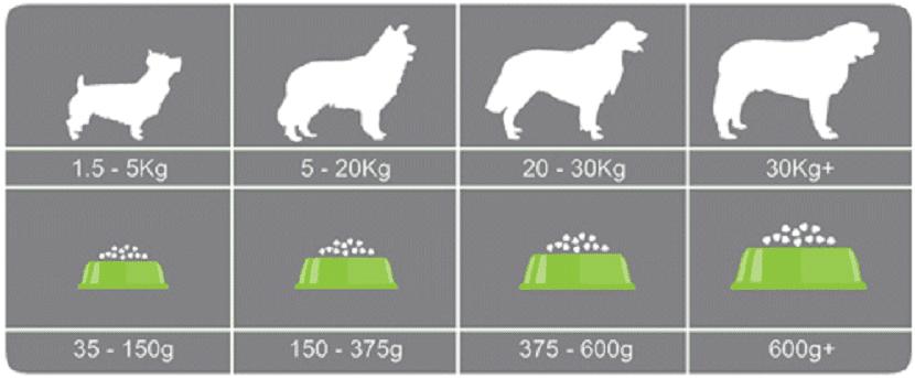Ajustar las raciones de lo que come tu perro