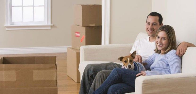 Una pareja con su perro en su nueva casa tras la mudanza.