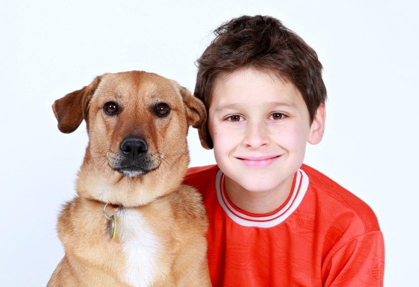 Perro con niño