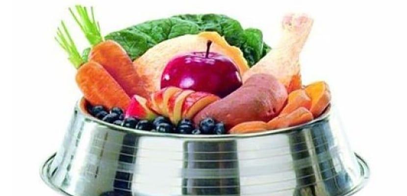 Alimentos humanos