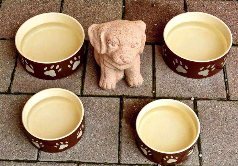 Comederos de cerámica para perros