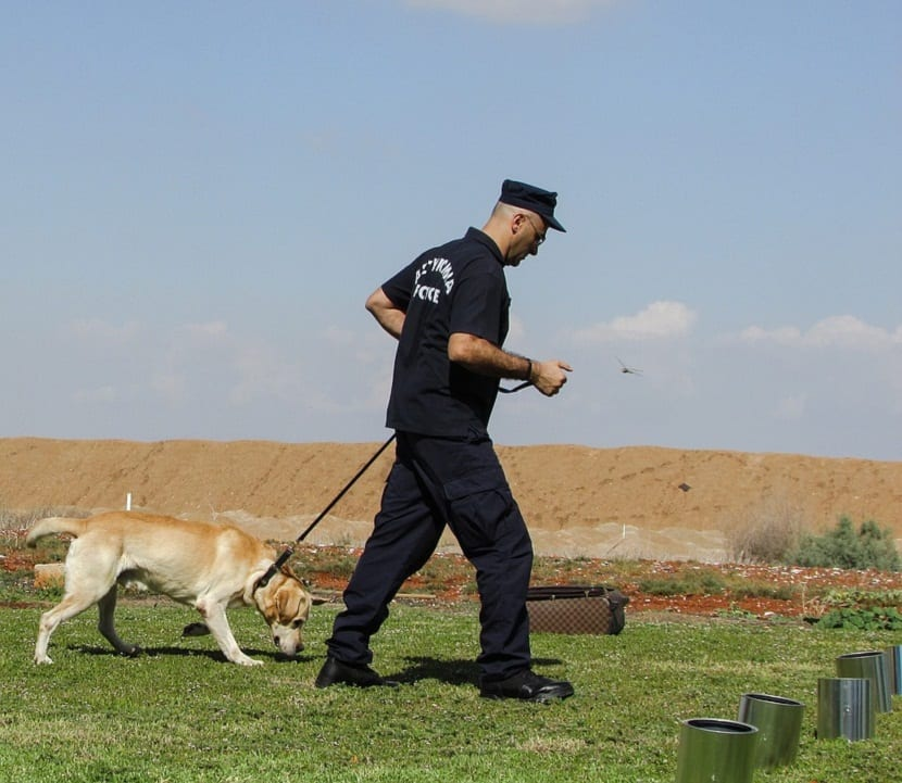 perro policia entrenando