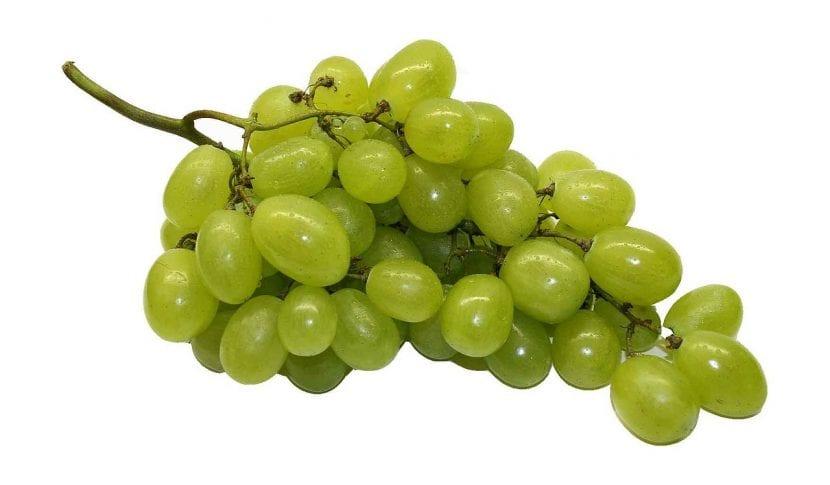 Ramo de uvas verdes