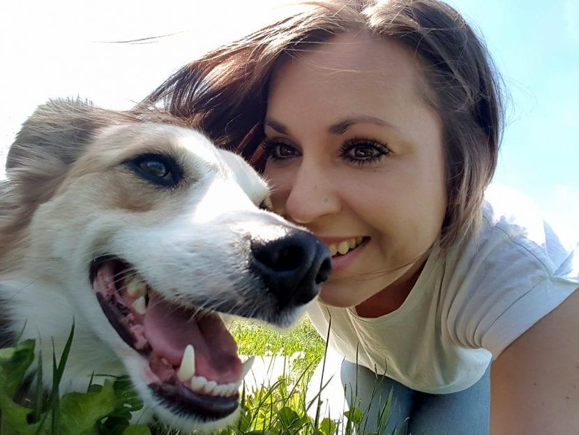 Llévate a tu perro a todas partes para que sea feliz