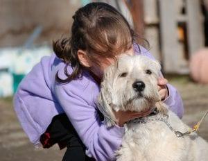 ¿Besar a los perros es malo?