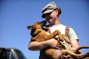 Adopta y no compres a un perro