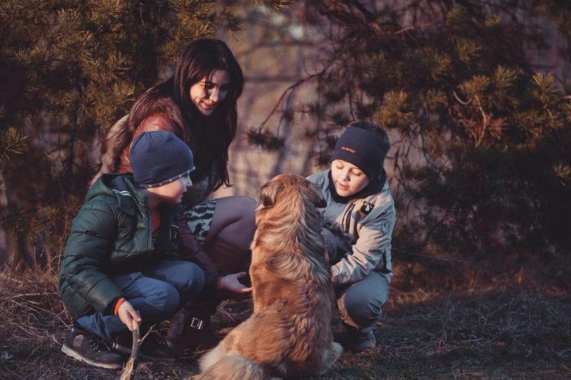 Perro con su familia