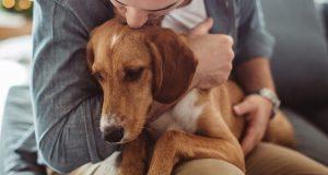 Dale cariño a tu perro con cáncer