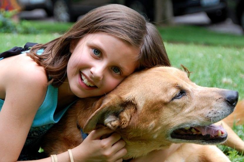 Perro cariñoso con niña