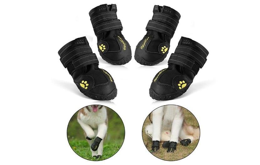 RoyalCare calzado impermeable para perros medianos y grandes