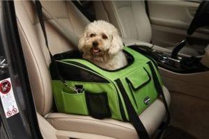 perro dentro de un transportin preparado para el viaje