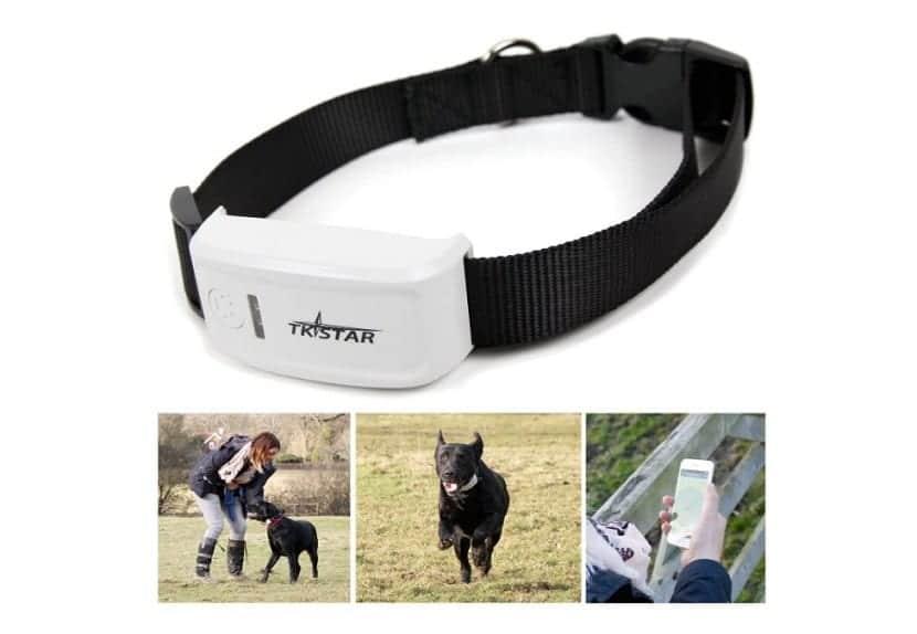 Localizador GPS para perros en tiempo real en forma de collar