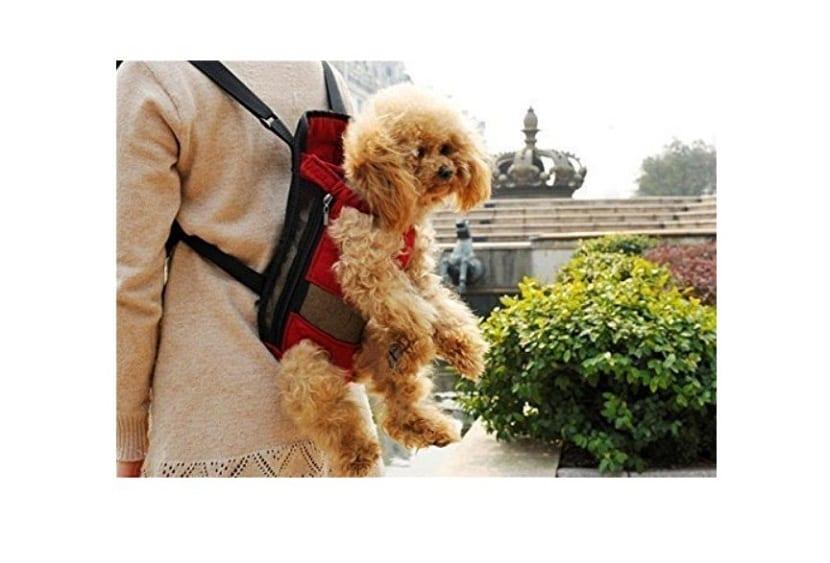 Petcomer Mochila Prepositiva para Perros