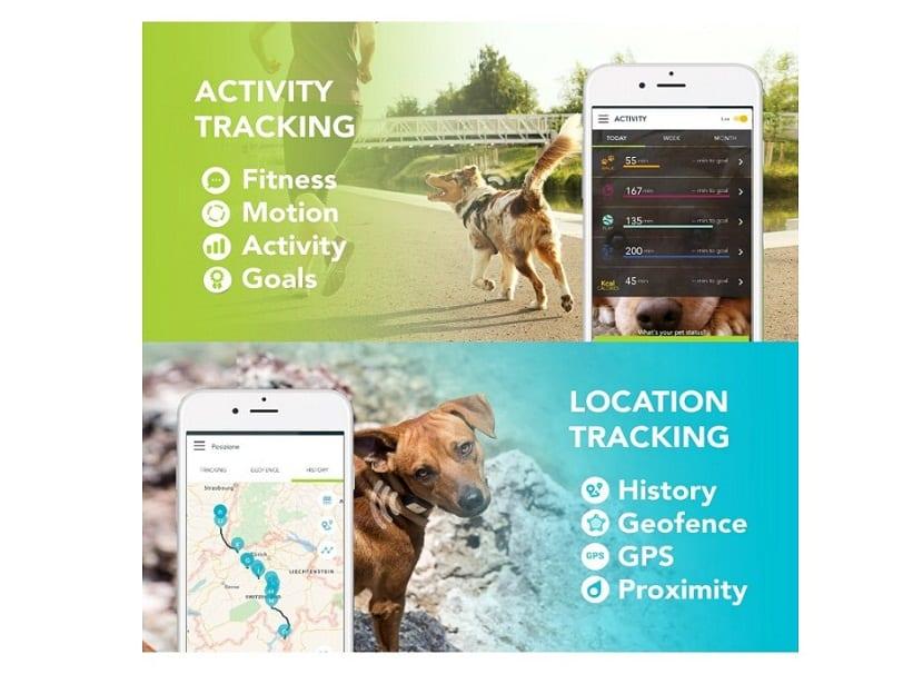 Rastreador GPS de mascotas en color negro