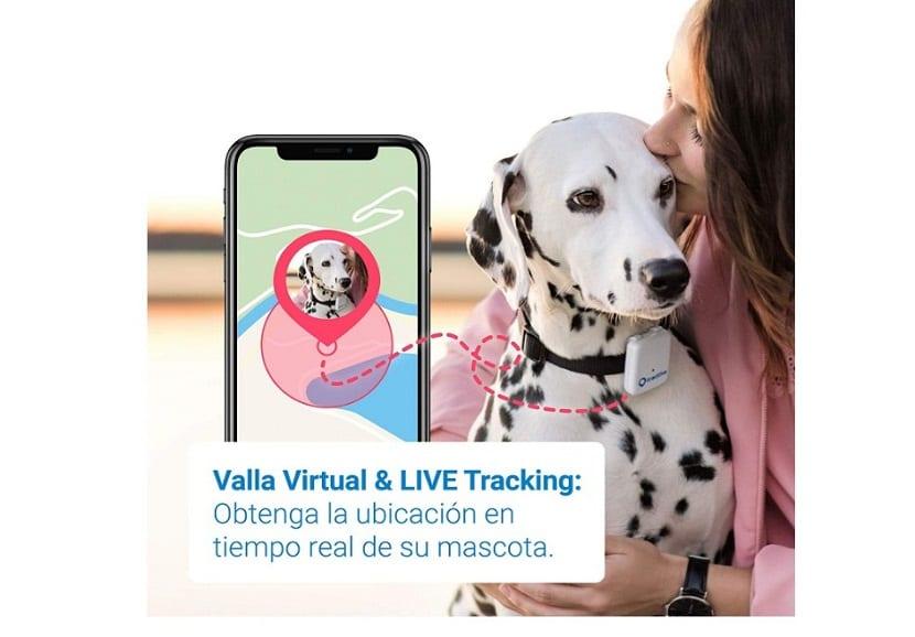 Rastreador Tractive GPS para perros resistente al agua