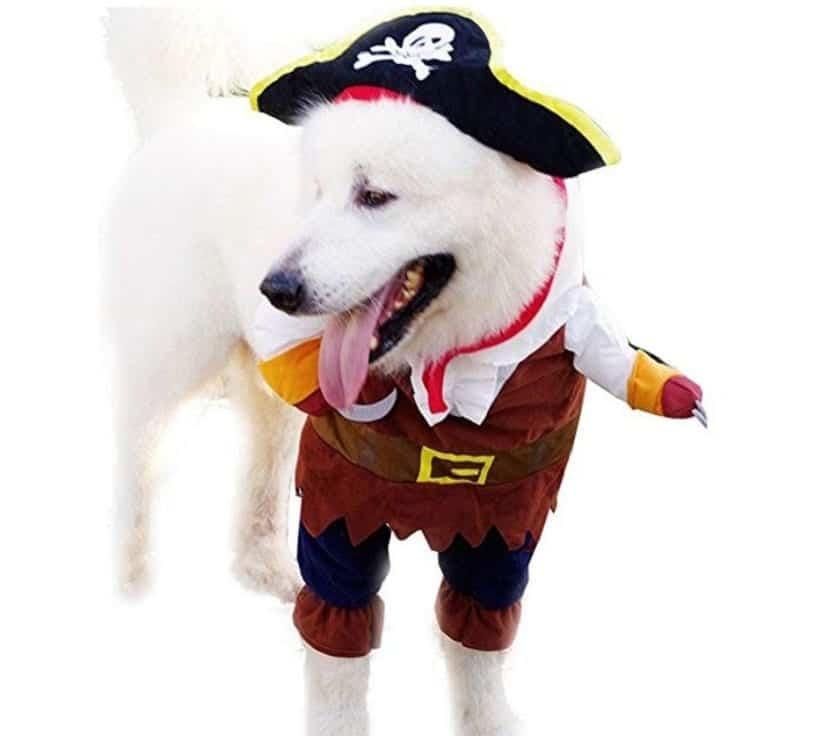 iEFiEL Disfraces de Pirata para perros