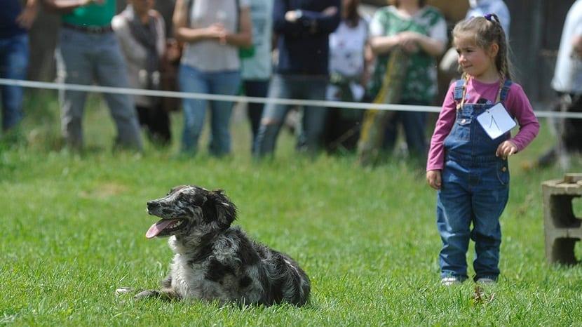 nina pequena junto a un perro que esta tumbado