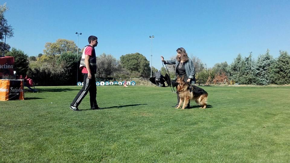 Perros protectores de Proyecto Pepo