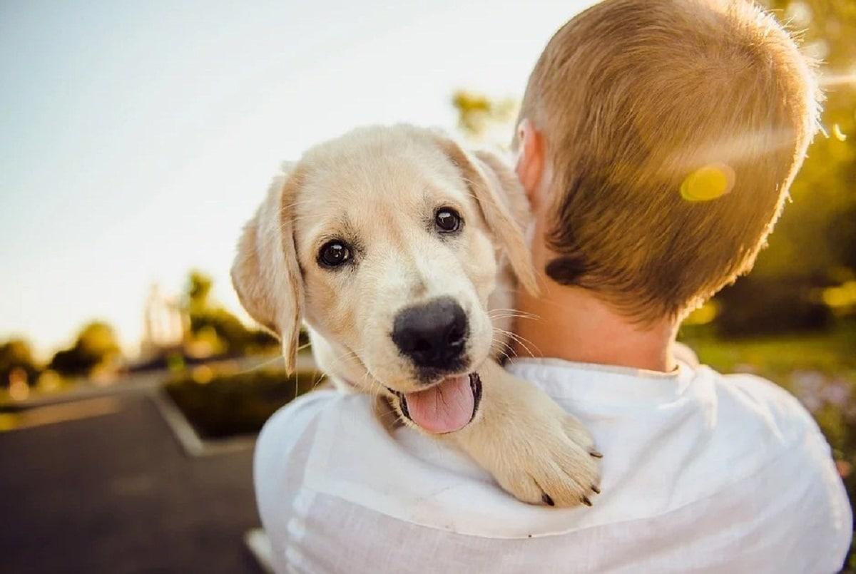 chico joven con cachorro en brazos