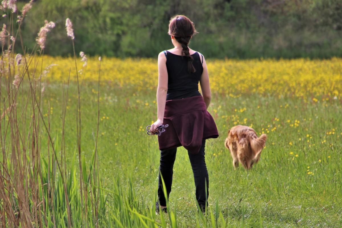 Hay perros que orinan demasiado sin tener problemas