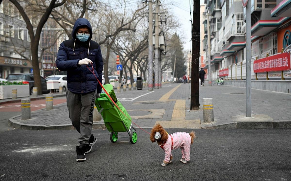 persona paseando con el perro y con mascarillas